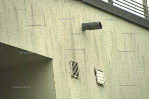 Algen Flechten Und Pilze An Der Fassade Holzmann Bauberatung